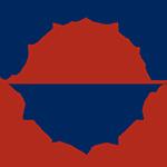 _surdna-logo